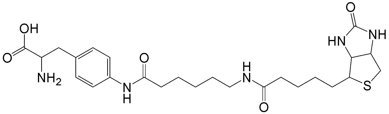Biotin-X-AF