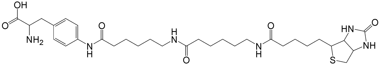 Biotin-XX-AF